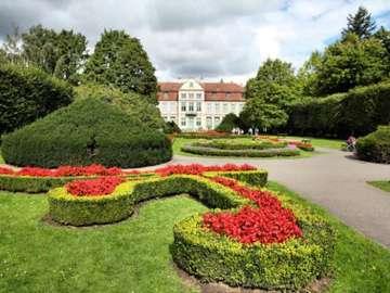 Oliwa Park - Fragment van het park in Gdańsk - Oliwa