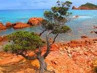 coasta stancoasa a Sardiniei