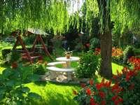volle zomer in de tuin - volle zomer in de tuin