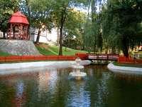 Park w Szprotawie