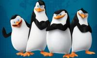 Penguins from Madagascar