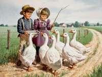 shepherds, flock of geese, fie - pastuszkowie,stadko gęsi,pole