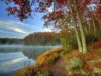 lake, forest, mist, autumn - jezioro,las,mgiełka,jesień