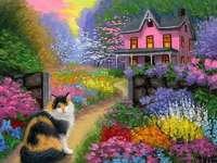градина, къща, пухкаво коте