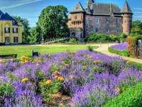 kasteel, lavendel, paleis - kasteel, lavendel, paleis