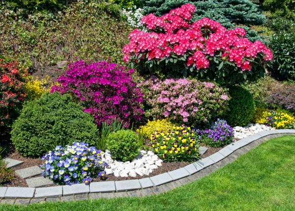 jardín colorido