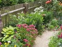 Jardim de flores rural - Jardim de flores rural