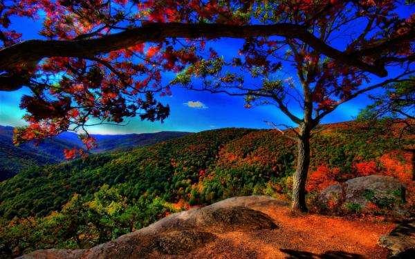 Podzim v horách jigsaw puzzle