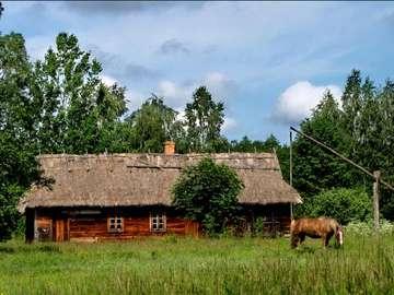 Paesaggi rurali polacchi - Stary wiejski dom, studnia i koń u studni ...