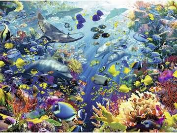 Rajska profondità - rajska głębia, rybki