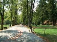 Спа парк