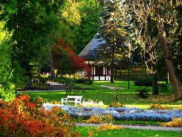 Połczyn Zdrój på sommaren - En vacker park i kurorten Połczyn Zdrój