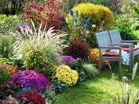 höstblommor i trädgården