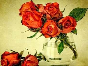 Roses in a vase - czerwone róże w wazonie