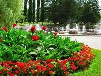 Parc, flori și fântâni