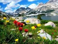 Góry, kwiaty i jezioro