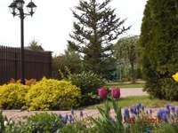 Notre jardin :)