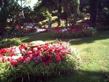 Italia - Capri: Ogrody Augusta - Italia - Capri. Na Anacapri warte do zobaczenia są ogrody Augusta w których można spędzić spoko