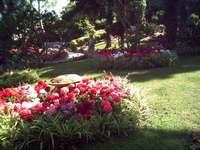 Italia - Capri: Augustus kertje - Italia - Capri. Anacapriban érdemes megnézni az Augusta kertjét, ahol kellemes pillanatokat tölt