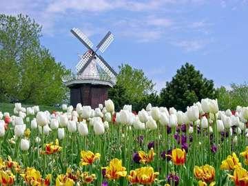 spring_puzzle_great - Moje nowe piękne puzzle