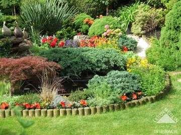 Colorful flower gardens - colorful flower gardens