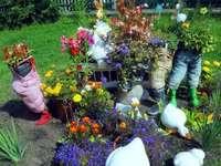 aiuola originale - kwiaty, spodnie, Kaczki, trawa