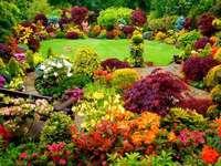 színes virágok a kertben