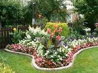 моята градина - и почистени в градината
