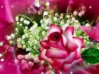 rosa lírios do vale lindo buquê