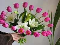 a colorful bunch - wiązanka fioletowych tulipanów