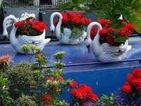 decorative set - trzy donice z białymi łabędziami
