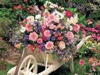compoziția florilor