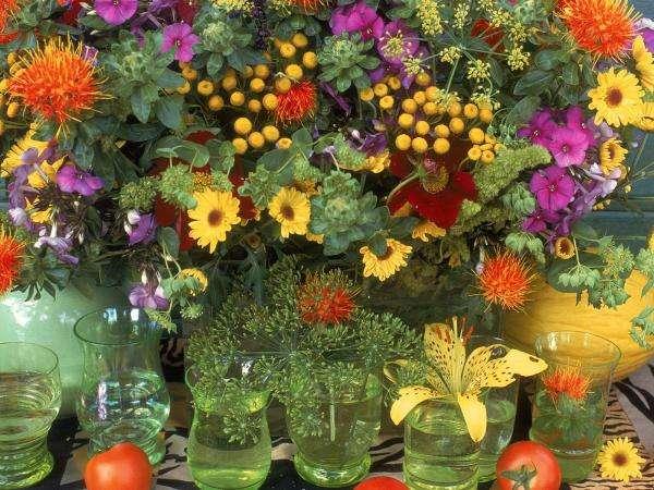 a bouquet of wild flowers - Field flowers from the meadow. Bukiet polnych kwiatów (10×5)