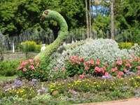 priveliște frumoasă - puteți face o pasăre din flori