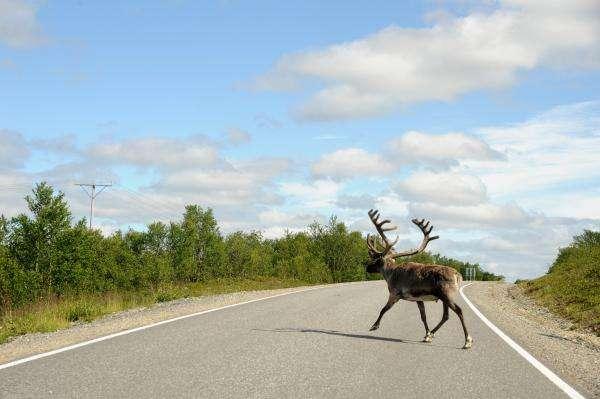 natura in Finlandia