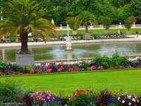 Париж - градината