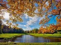 podzimní krajina na vodě