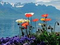 Un maravilloso lago de montaña
