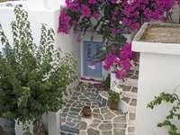 adorável Grécia - Ilha na Grécia. Flores, casas, calçadas, branco, Calçada, flores, casas, portas, janelas.