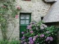 casă frumoasă