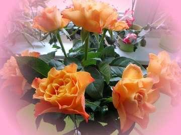 Roses in a vase - Królowe kwiatów - czyste piękno!