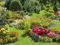 grönt hörn i trädgården - välskött vacker trädgård