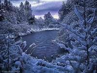 magická zima - jezera, stromy, les, sníh
