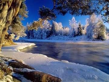 très belle vue - rzeka, nienieg, drzewa, zima