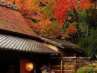 Japonské dojmy - okouzlující zákoutí světa