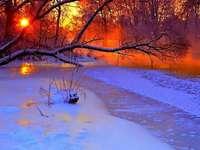 pôr do sol encantador - Neve, sol, árvores, arbustos, brilho