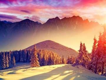 cudowny widok - zielone łąki, góry,lśniące słonice.