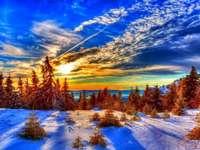 winter in the mountains - drzewa,śnieg,słońce,zima