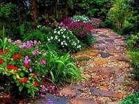 alee cu flori - poteca în grădină și flori de lângă ea