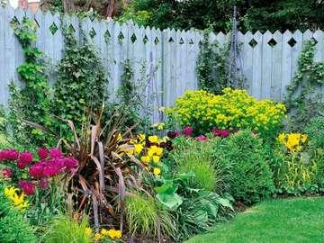 kwiaty  w  ogrodzie - letnie inspiracje kwiatowe